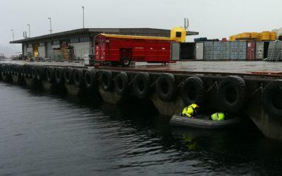 Rehabilitering av kai D/hurtigrutekaia, Fugleskjærkaia